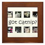 Got catnip Framed Tile