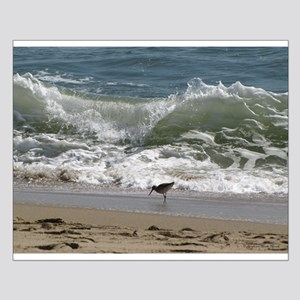 Kill Devil Hills Shore Bird Small Poster