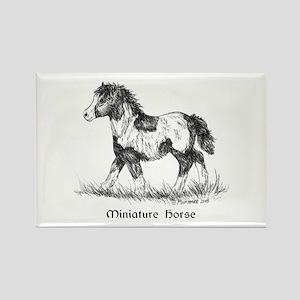 Miniature Horse Foal Rectangle Magnet
