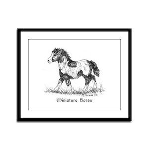 Miniature Horse Foal Framed Panel Print
