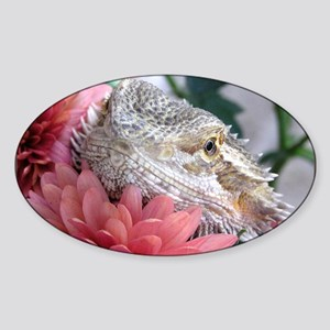 Bearded Dragon 003 Oval Sticker
