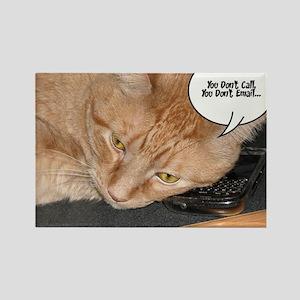 Orange Tabby Cat Humor Rectangle Magnet