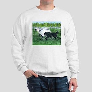 Belgian Sheepdog Herding Sweatshirt