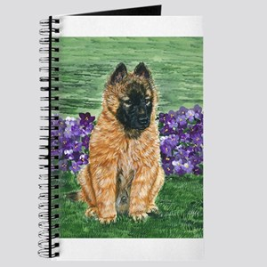 Belgian Tervuren Puppy Journal