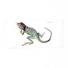 Collared Lizard Aluminum License Plate