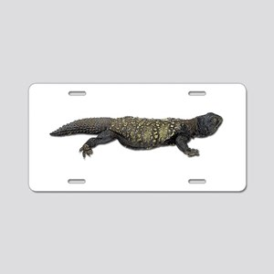 Mali Uromastyx Photo Aluminum License Plate