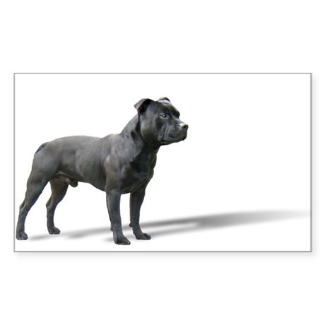 Standing Staffordshire BUll Terrier Sticker (Recta