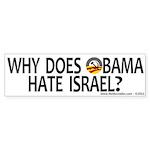 Anti-Obama Why Does Obama Hate Israel (10 pk)