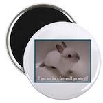 Bunny Coat Magnet