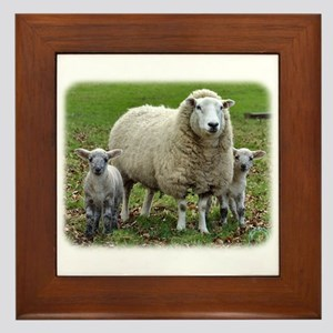 Sheep and Lambs 9R12D-35 Framed Tile