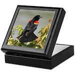 Redwing Perching Keepsake Box