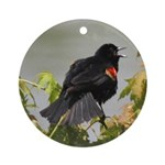 Redwing Singing Ornament (Round)