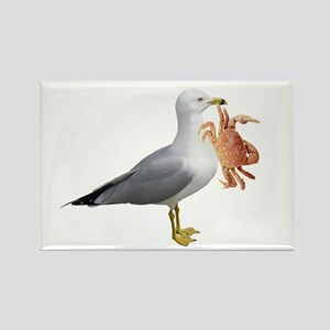 Seagull & Crab Rectangle Magnet