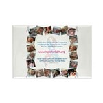 Vote for CDH Rectangle Magnet (100 pack)