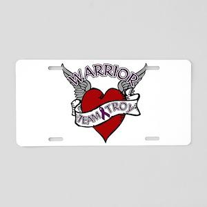 TEAM TROY : 2 Aluminum License Plate