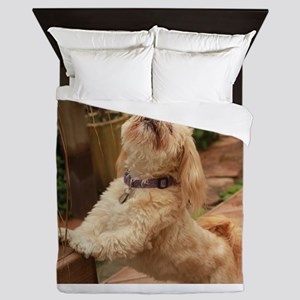 blond lhasa stretching on bench in bac Queen Duvet