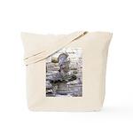 Roman Centurion Tote Bag