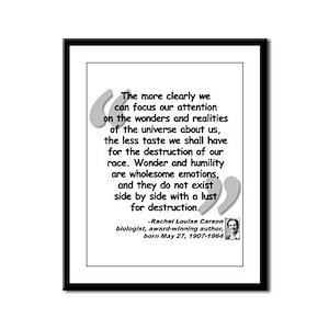 Carson Wonder Quote Framed Panel Print