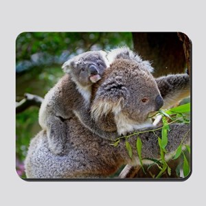 Baby Koala Bear with mom Mousepad