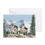 Together for Life: Greeting Cards (Pk of 20)