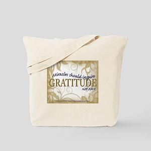 ACIM-Miracles Should Inspire Gratitude Not Awe Tot