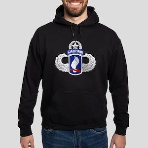 173rd Airborne Master Hoodie (dark)