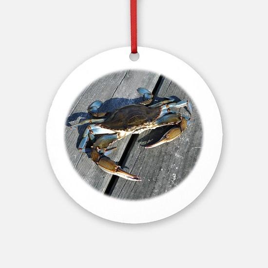 Ooh crab! Ornament (Round)