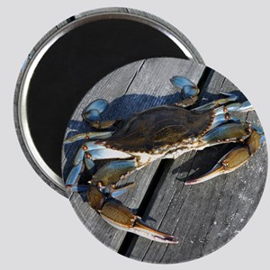 Ooh crab! Magnet