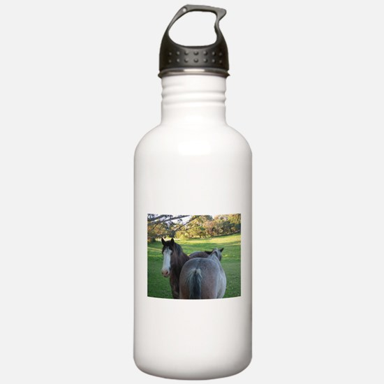 Draught Horses Sports Water Bottle