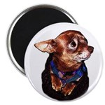 """Chihuahua 2.25"""" Magnet (100 pack)"""