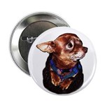 """Chihuahua 2.25"""" Button (100 pack)"""