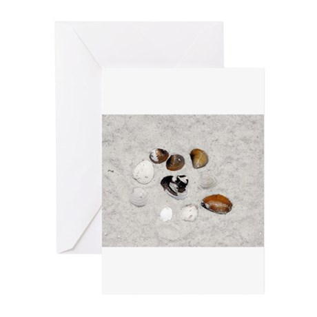 Seashells and Sand Greeting Cards (Pk of 20)
