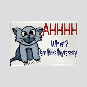 Scary Kitty Rectangle Magnet