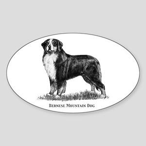 Bernese Mountain Dog Sticker (Oval)