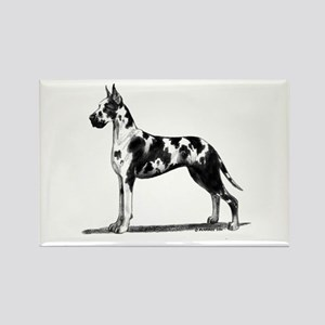 Great Dane Rectangle Magnet