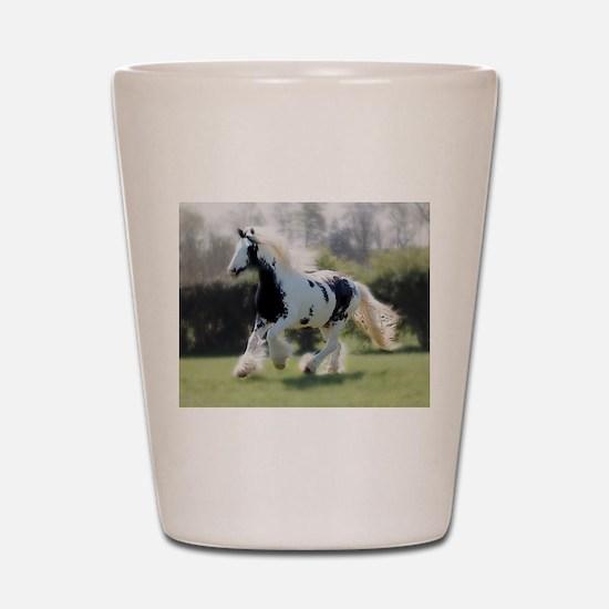 Gypsy Horse Mare Shot Glass