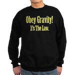 Gravity Sweatshirt (dark)