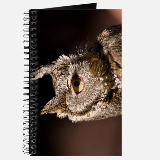 Burrowing Owl Profile Journal