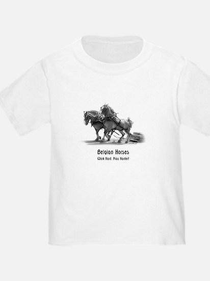 Belgian Horse T