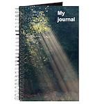Sunlight-through-trees journal