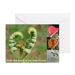 Hearts-in-nature greeting card