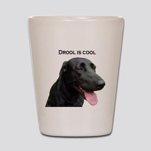 drool is cool Shot Glass