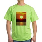 franklinsworld.com Green T-Shirt