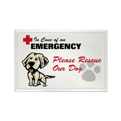 Save My Yellow Lab Rectangle Magnet
