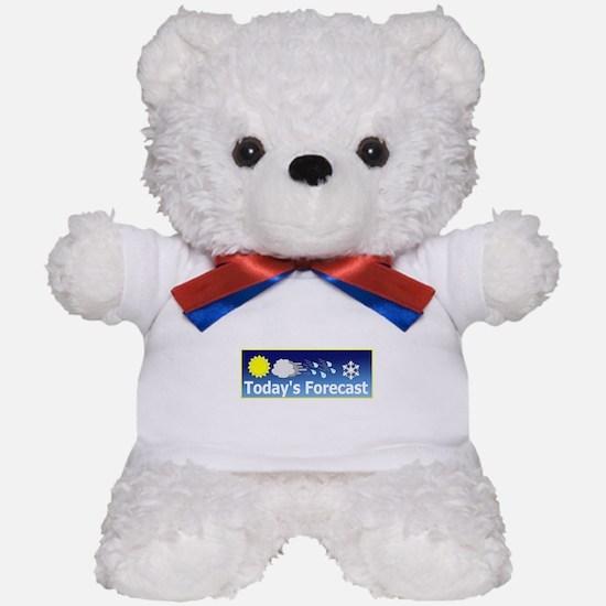 Mixed Forecast Teddy Bear