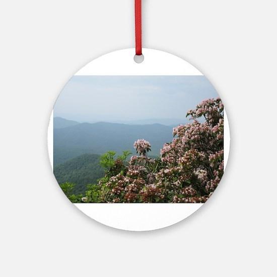 Blue Ridge Parkway Ornament (Round)