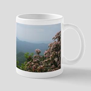 Blue Ridge Parkway Mug