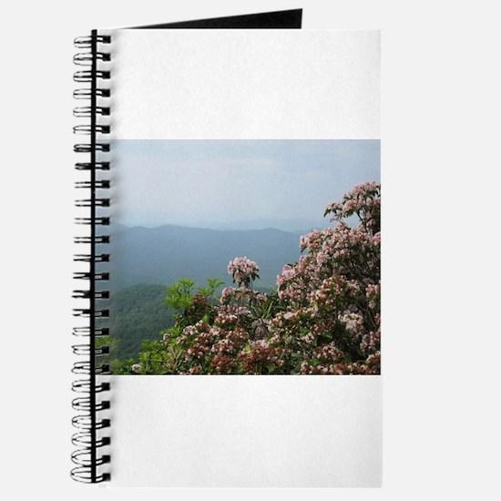 Blue Ridge Parkway Journal