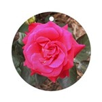 Red Museum Rose Ornament (Round)