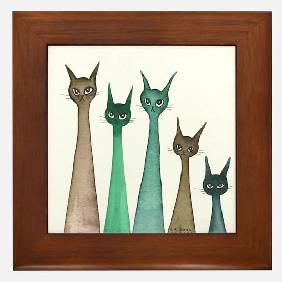 Nova Scotia Stray Cats